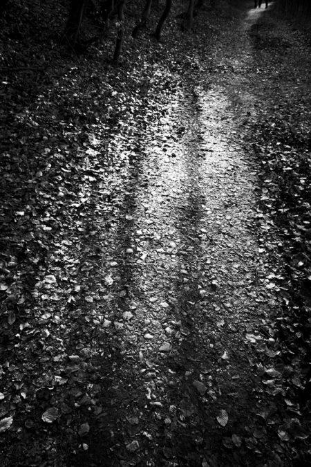 reflets sur le sol